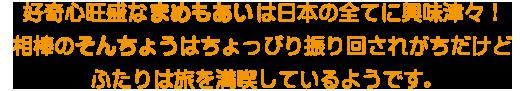 好奇心旺盛なまめもあいは日本の全てに興味津々!相棒のそんちょうはちょっぴり振り回されがちだけどふたりは旅を満喫しているようです。